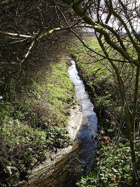Ditch by Seasalter Lane