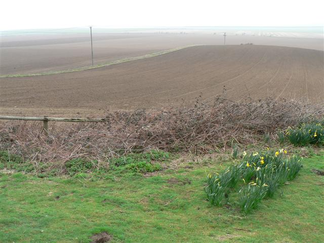 Ploughed Fields at South Down