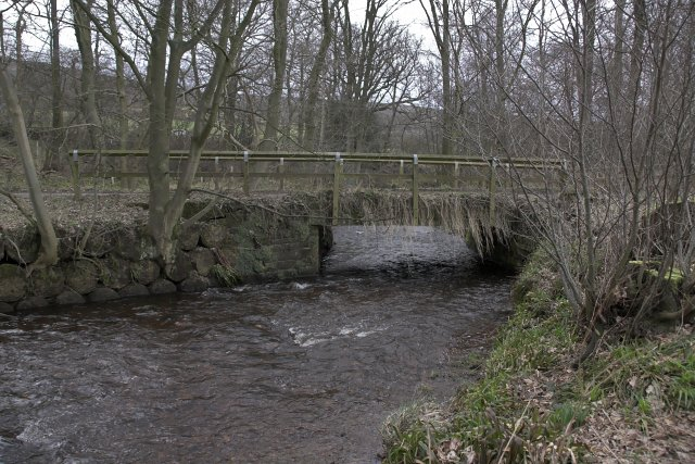 Bridge at Osseker Crook Wood