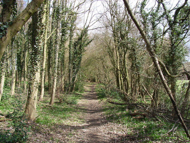 Footpath, south of Little Kingshill