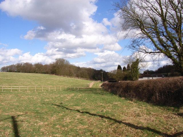 Farmland beside Nag's Head Lane