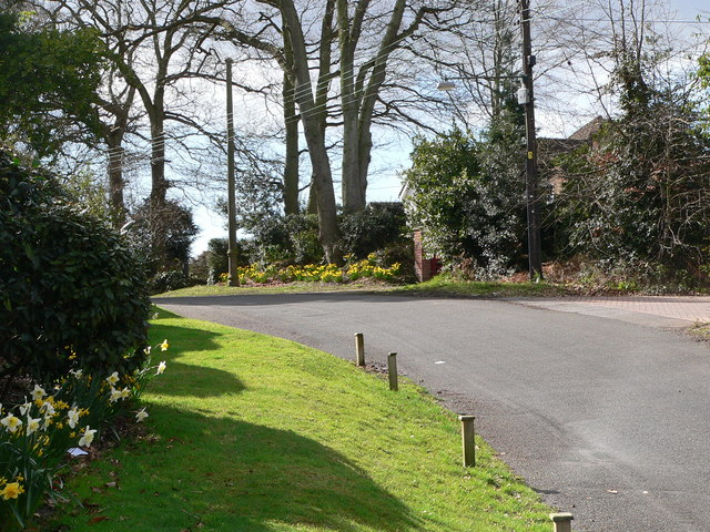 Lower Mullins Lane