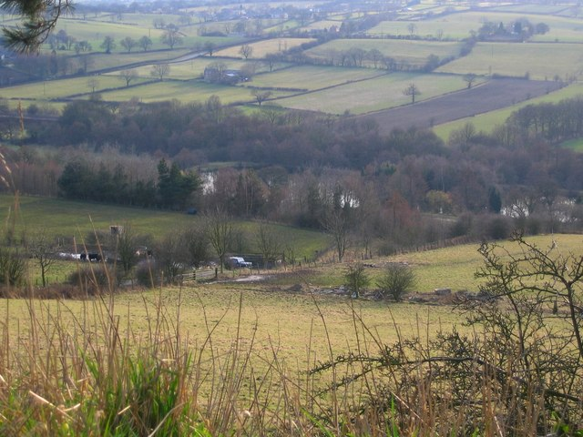 Higham Farm Ponds