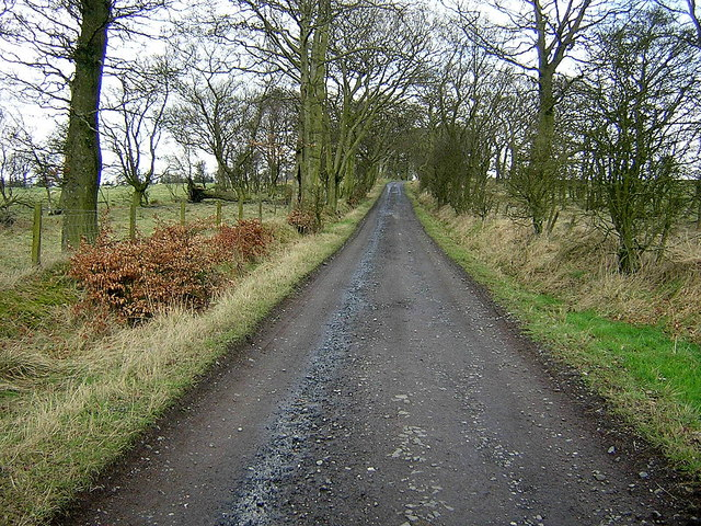 Track to Easterton