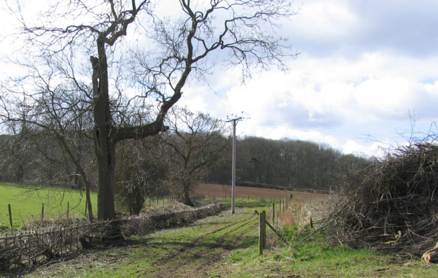 Footpath to Burrough Hill