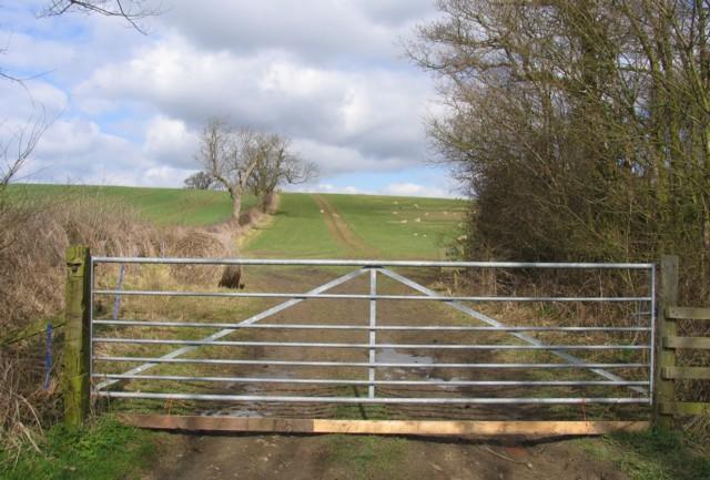 Field by Landfield Spinney