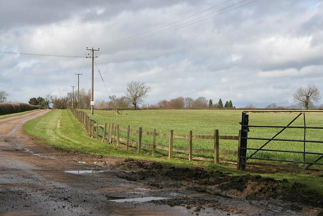 Farmland between Langham and Ashwell
