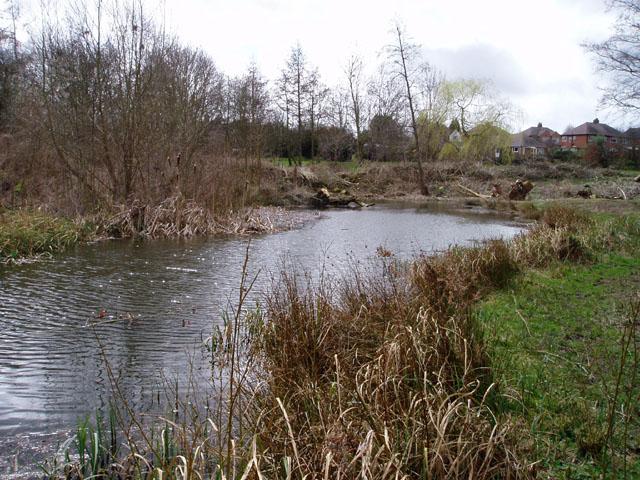 Copthorne Park