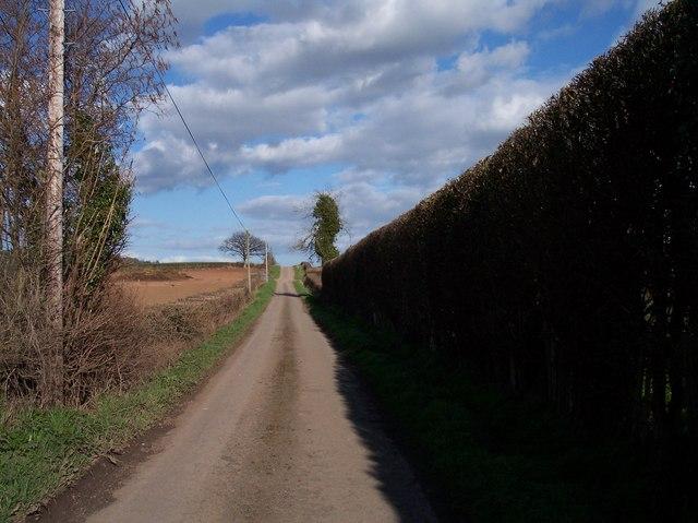 Roman Road, Bartestree