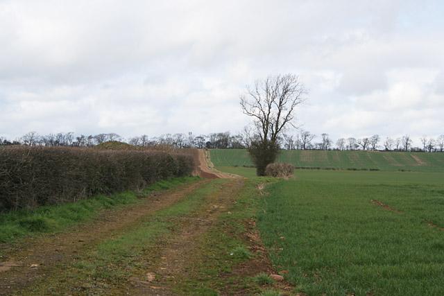 Farmland near Langham, Rutland
