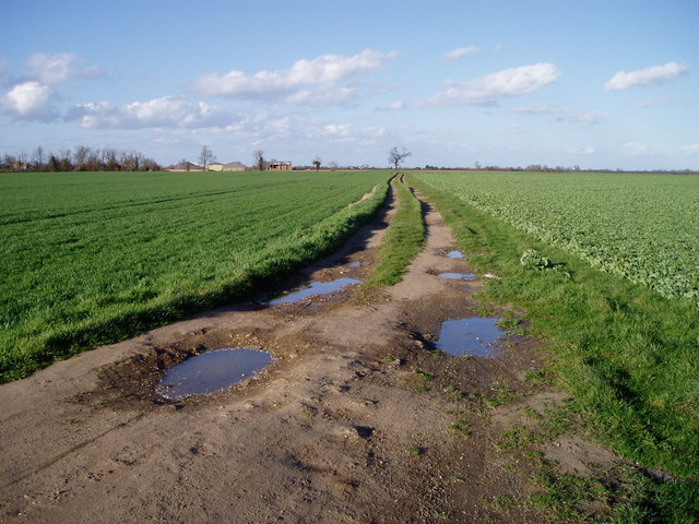 Track near Eye Hall Farm, Horningsea