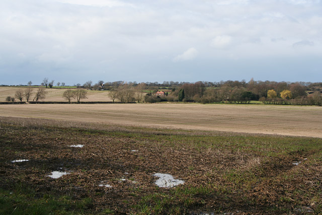 Farmland near Ashwell