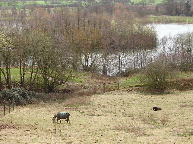 Bodenham gravel pits
