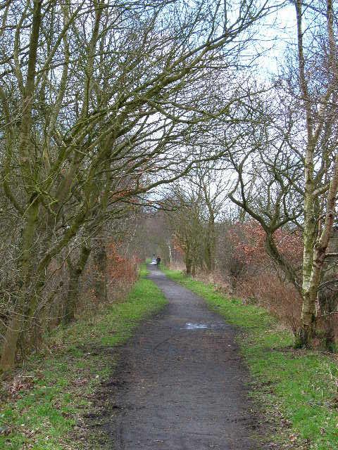 Deerness Valley Path, near Esh Winning