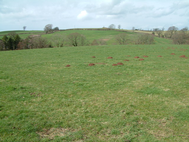 Farmland, Stanton Wick