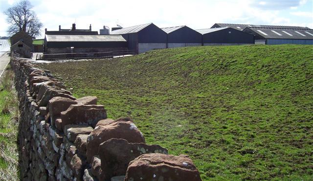 Castlesteads Farm.