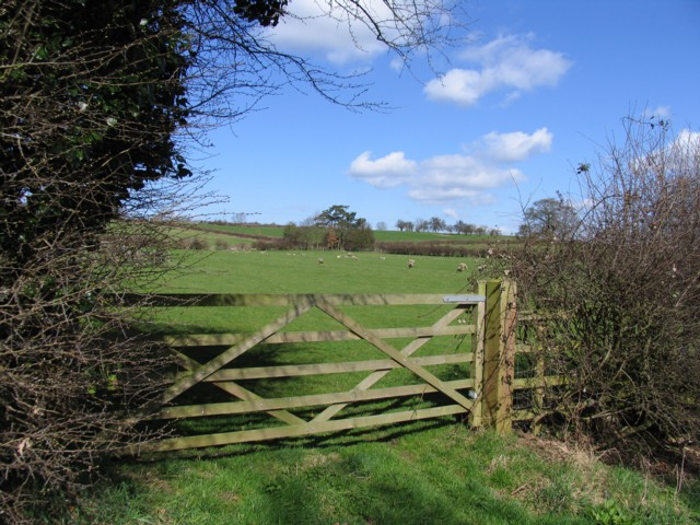 Field near to Ratcliffe on the Wreake