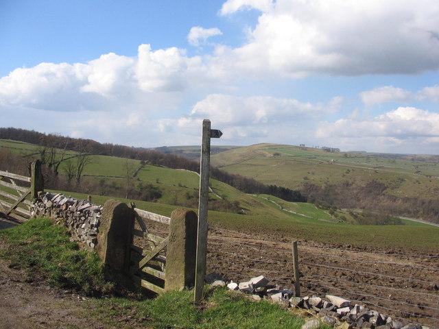 View across Kirkdale to Limestone Plateau