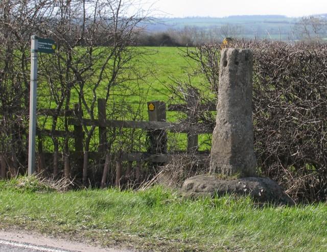 Stump Cross