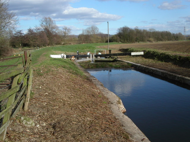 Stroudwater canal filled in section.