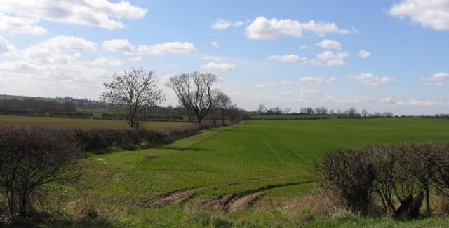 Fields SE of  A6006