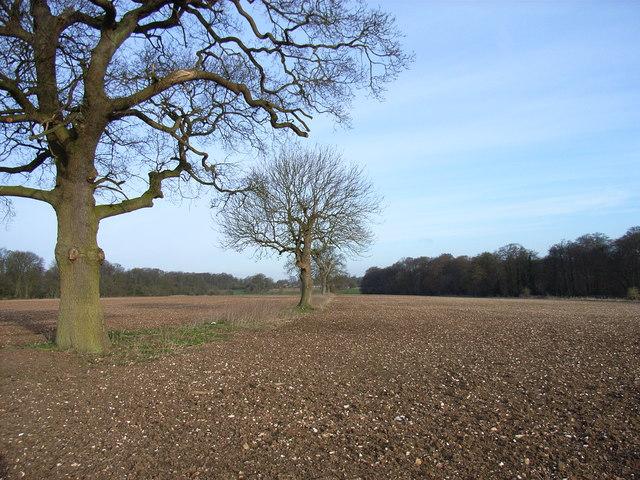 Farmland above Wycombe