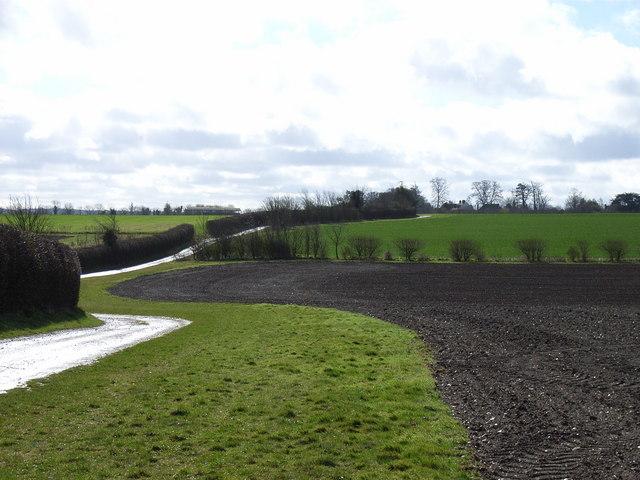 Bridleway to Upton Grey