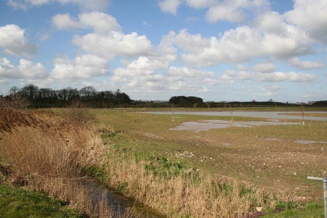 New Fishing Ponds