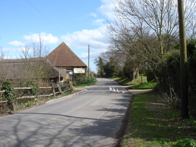 Ducks, Pett Road, East Sussex