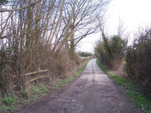 Veldo Lane, Withington Marsh