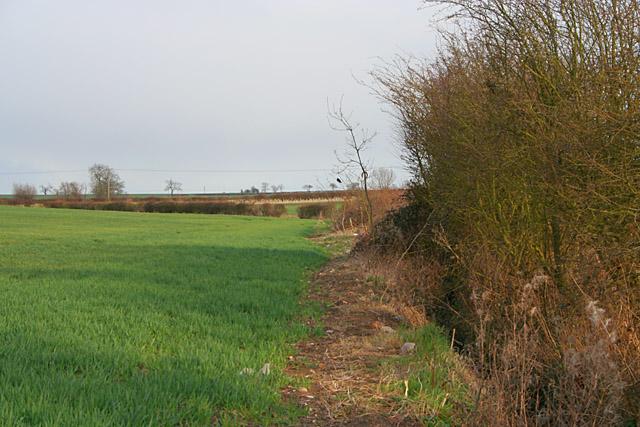 Farmland near Wymeswold