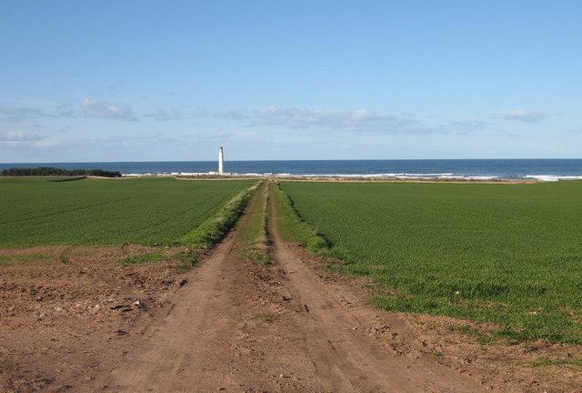 Farm Track at East Barns, near Dunbar