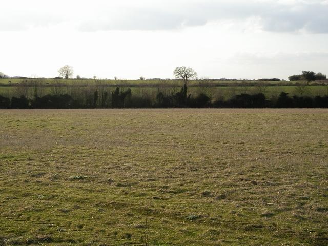 Field east of Basingstoke Road