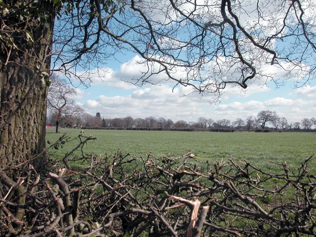 Woodbank