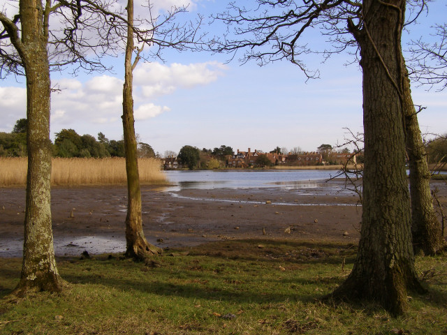 View towards Beaulieu from the north, New Forest