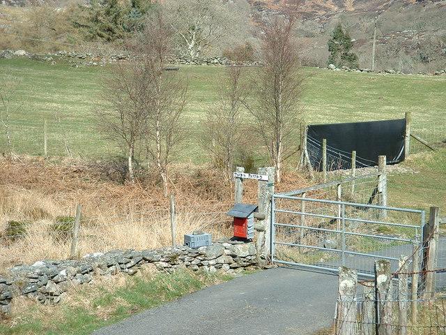 Farm gate at Tyddyn Rhyddyd