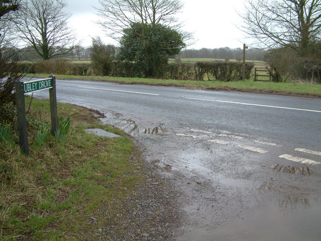 Ubley Drove, Somerset