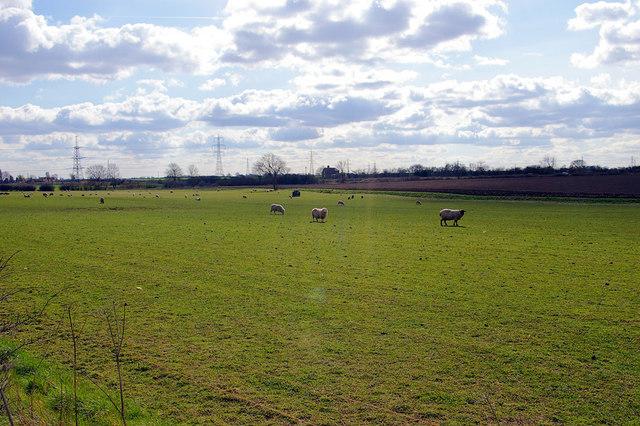 South of Abbey Farm