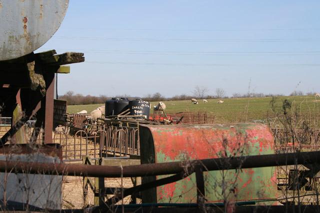 Farmland at Whissenthorpe