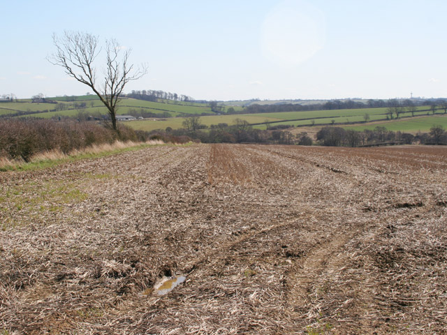 Farmland on Stygate Lane