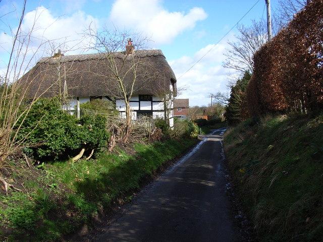 Cottage and lane, Up Nately
