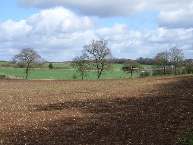 Farmland near Four Lanes End