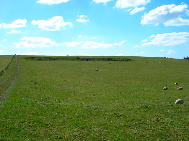 Ancient Field System, Eastdean Down