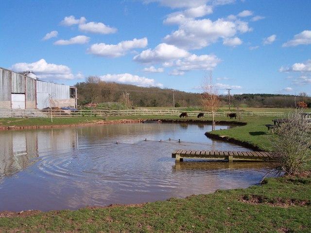 Ullingswick Pools