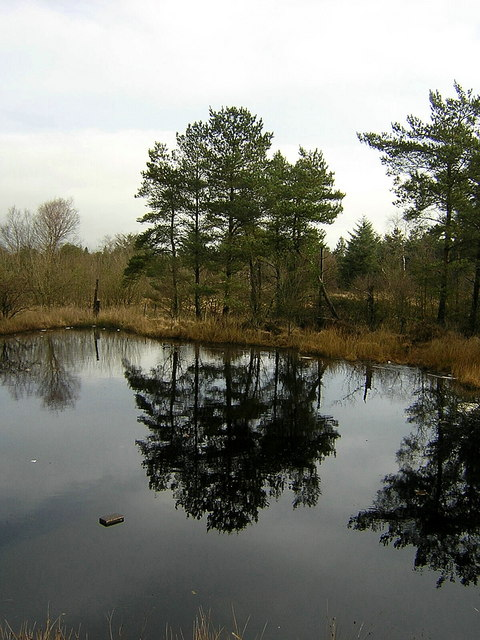 Small Pond Near Fannyside Muir