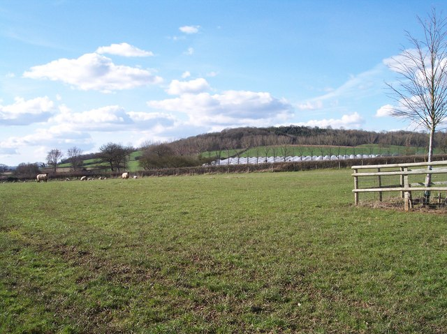 Sheep Pasture and the Poly-Tunnels