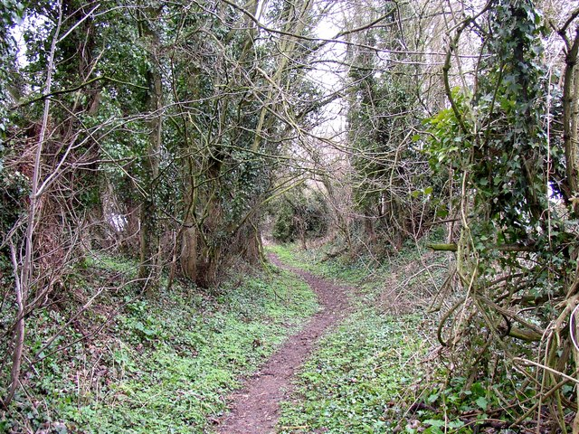Stokes Lane, Monk Sherborne