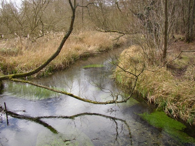 The River Loddon, Old Basing