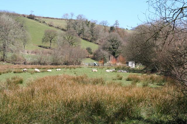 West Anstey: near Dunsley