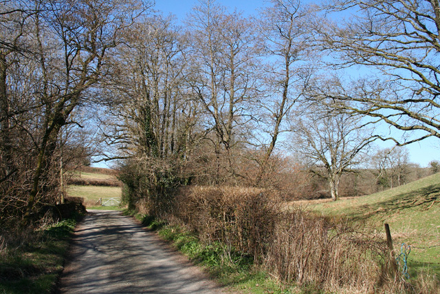Brushford: lane to Nightcott